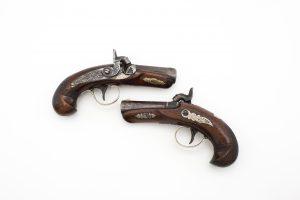 Guns/Arms